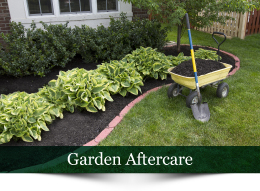 Plant A Seed Garden maintenance & contract services CTA