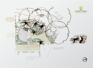 Copplestone, Devon Garden Design by Plant A Seed sketch plan