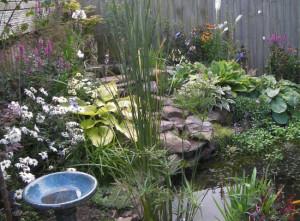 Copplestone2, Devon Garden Design by Plant A Seed after 2