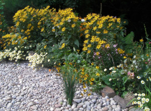 Copplestone2, Devon Garden Design by Plant A Seed after 4