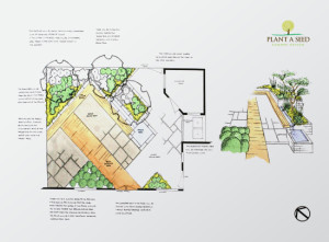 HorseGuards, Exeter Garden Design by Plant A Seed - plan sketch