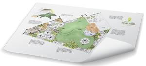 Plant A Seed Garden Design completed design Exeter
