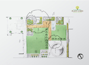 St Leonards, Exeter Garden Design by Plant A Seed plan of garden
