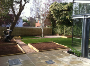 St Leonards, Exeter Garden Design by Plant A Seed - after 2