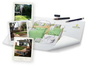 St Leonards, Exeter Garden Design by Plant A Seed portfolio