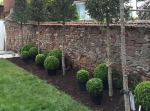 Plant-A-Seed-Garden-Design-St-Leonards-Exeter-Portfolio-update-1