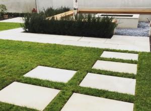 Plant-A-Seed-Garden-Design-St-Leonards-Exeter-Portfolio-update-11